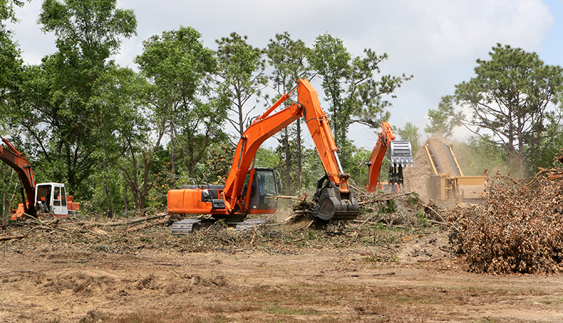 Land Clearing in Brisbane